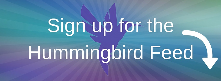 Sign up for the Hummingbird Feed